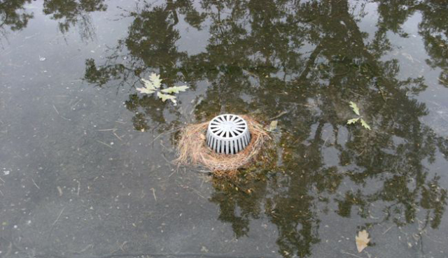 Roof Drains